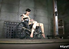 Tied up to wheel chair white slut Elise Graves gets dildo fucked by black Jack Hammer